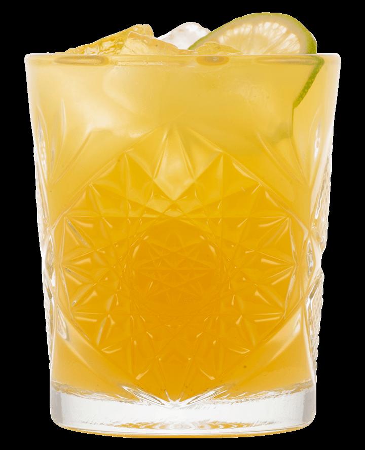 Den officielle Gin Hass opskrift - Gin Hass® drink